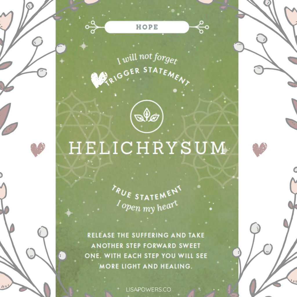 Helichrysum essential oil can help to heal your emotional wounds.